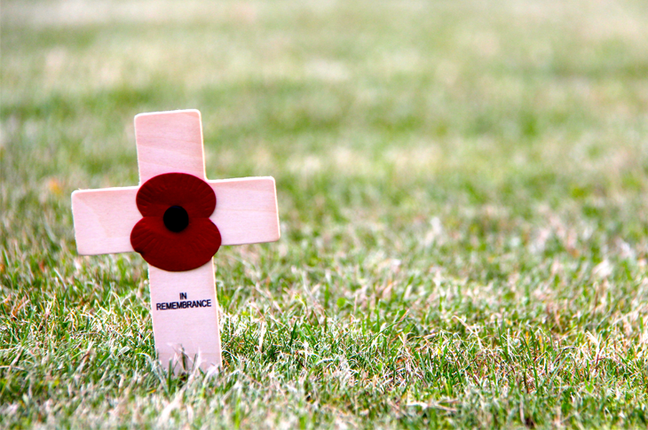 In remembrance - cross and poppy in grass